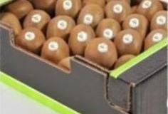Kiwi Package 6
